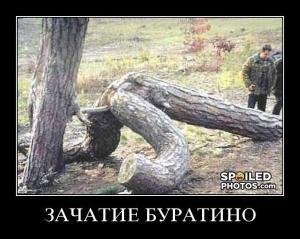 post-1266-1258033630_thumb.jpg