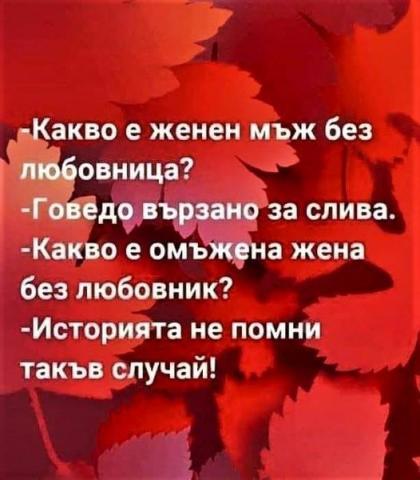 194355412_1206150176487754_5349134874847796942_n.jpg